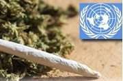 UN Drug Commission Delays THC Rescheduling